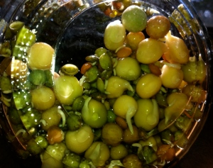 Sprouting Bean Mixture